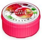 Kringle Candle Daylight - Świeczka Cortland apple