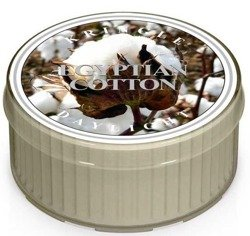 Kringle Candle Daylight - Świeczka Egyptian cotton