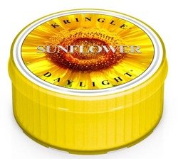 Kringle Candle Daylight - Świeczka Sunflower
