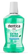Dentica Mint Fresh Mouthwash - Płyn do płukania jamy ustnej, 500 ml